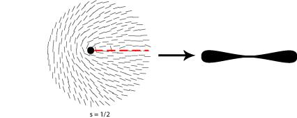 Diagram of disinclination in nematic liquid crystal s=1/2