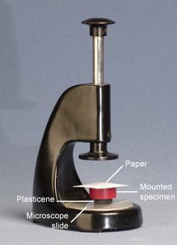 Labelled photograph of specimen levelling press